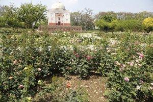 India_New Delhi_5702