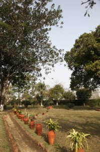 India_Wild Mahseer_8018