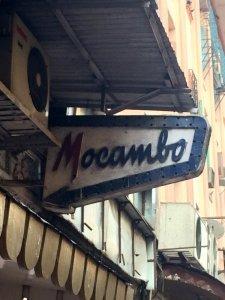 Mogambo_9476