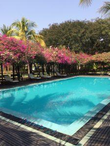 Myanmar_Thazin Garden Hotel_3939