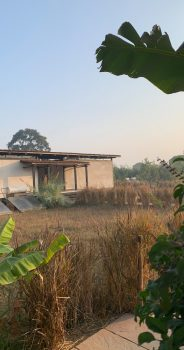 Bori Safari Lodge in Madhya Pradesh